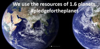 Earth Overshoot Day - My Pledges for the Planet, boomer warrior