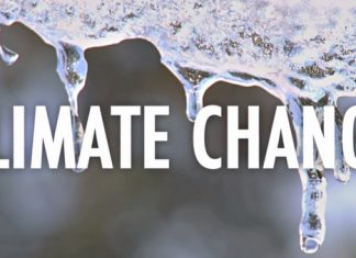 We Have A Climate Crisis: 10 Facts To Know, Below2C