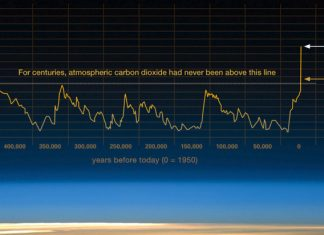 Negative Emissions Are The Way Of The Future, Below2C
