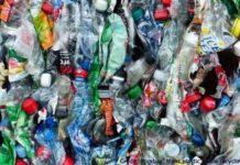 You Eat 50,000 Plastic Particles A Year, Below2C