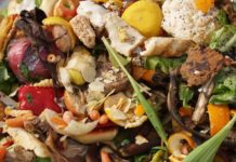 What Does Food Waste Have To Do With The Climate Crisis