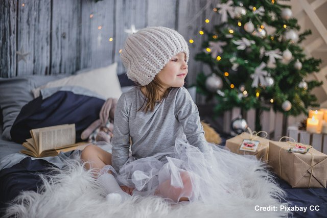 Seven Tips To Make Your Holiday Season Greener, Below2C