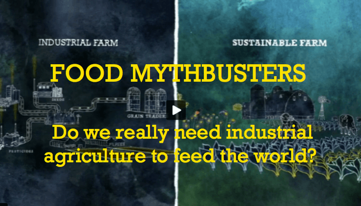 Hunger and Food Production