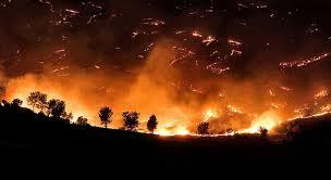 photo of wildfires during summer of 2012