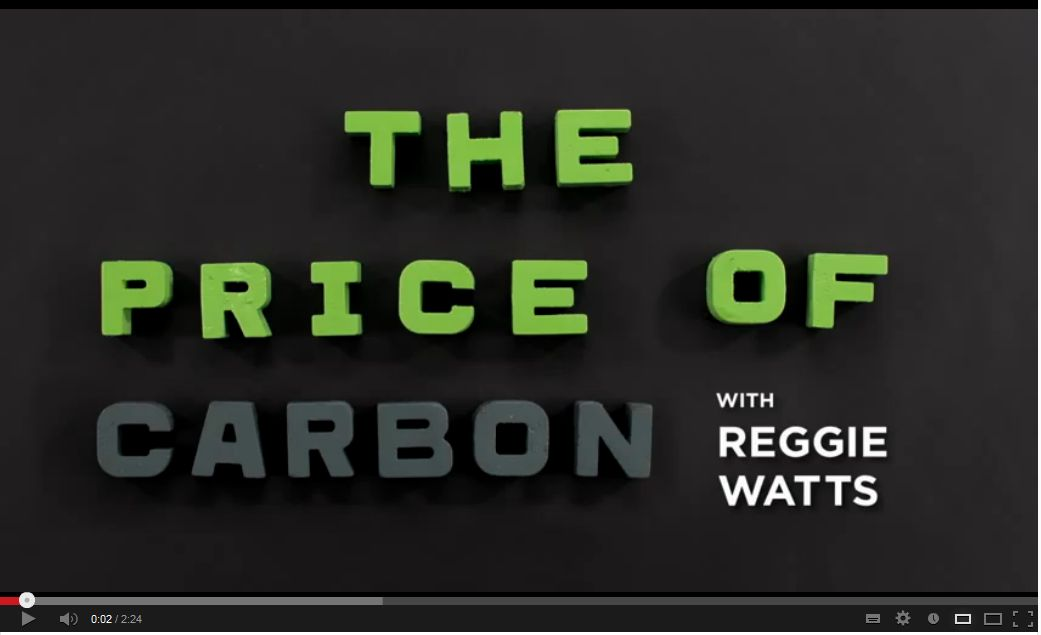 The Price of Carbon
