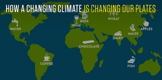 How a Changing Climate is Changing ou
