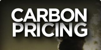 All You Need to Know About Carbon Pricing on Videos and Images, boomer warrior