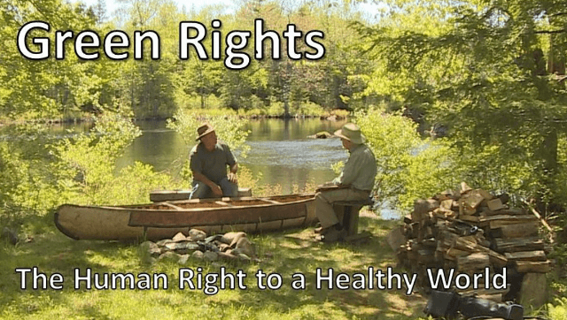 Green Rights - Air, Water, Food, boomer warrior