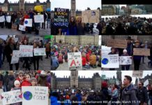 The Power of 1.4 Million Students On Climate Strike, Below2C