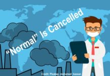 NORMAL is Cancelled Due To COVID Pandemic, Below2C