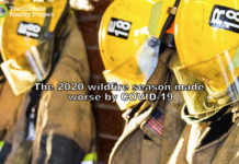 The 2020 Wildfire Season Will Be Worse Due To COVID-19, Below2C