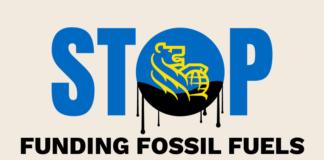 Fossil Banks No Thanks, Below2C