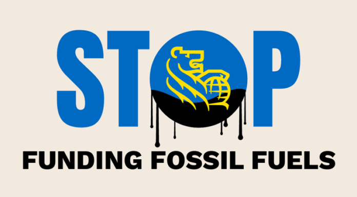 Fossil Banks No Thanks, Below2C