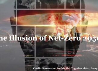 Is Net-Zero 2050 Just Another Spin on Climate Action, Below2C